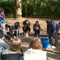 Forest school 7